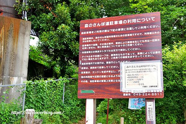 森のさんぽ道駐車場