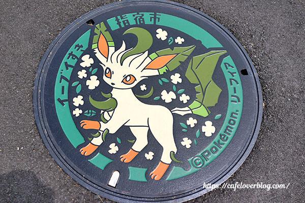 リーフィアマンホール◇鹿児島県指宿市