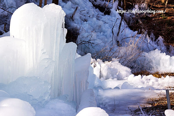 冬らしい観光スポットでした